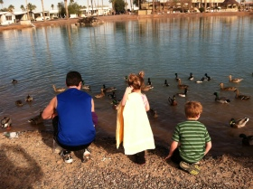 Feeding the ducks in Scottsdale, AZ